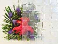 Tarassa - Figuurglas voor PVC ramen